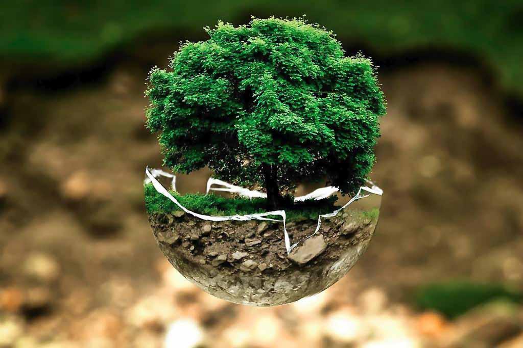 ingeniería en medio ambiente